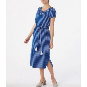 NWOT Appleseed's blue white Striped Dress